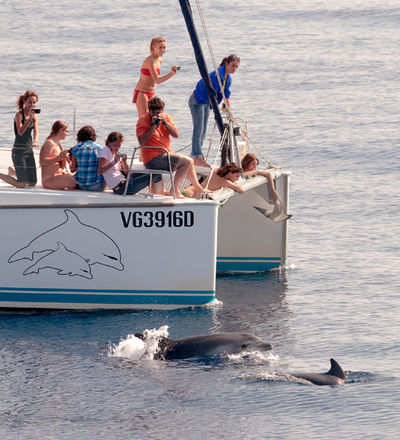 Boat trips organised by CE.TU.S to meet the dolphins, Viareggio