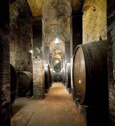 Montepulciano cantine