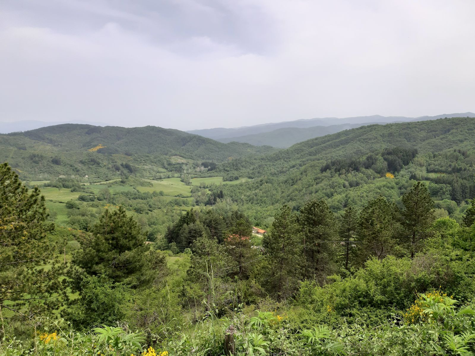 Montemignaio - Hidden land of the Casentino - Tuscany, Beautiful Everywhere