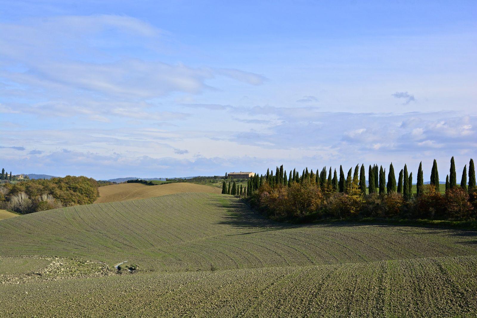 Castelnuovo Berardenga - An Open-Air Museum