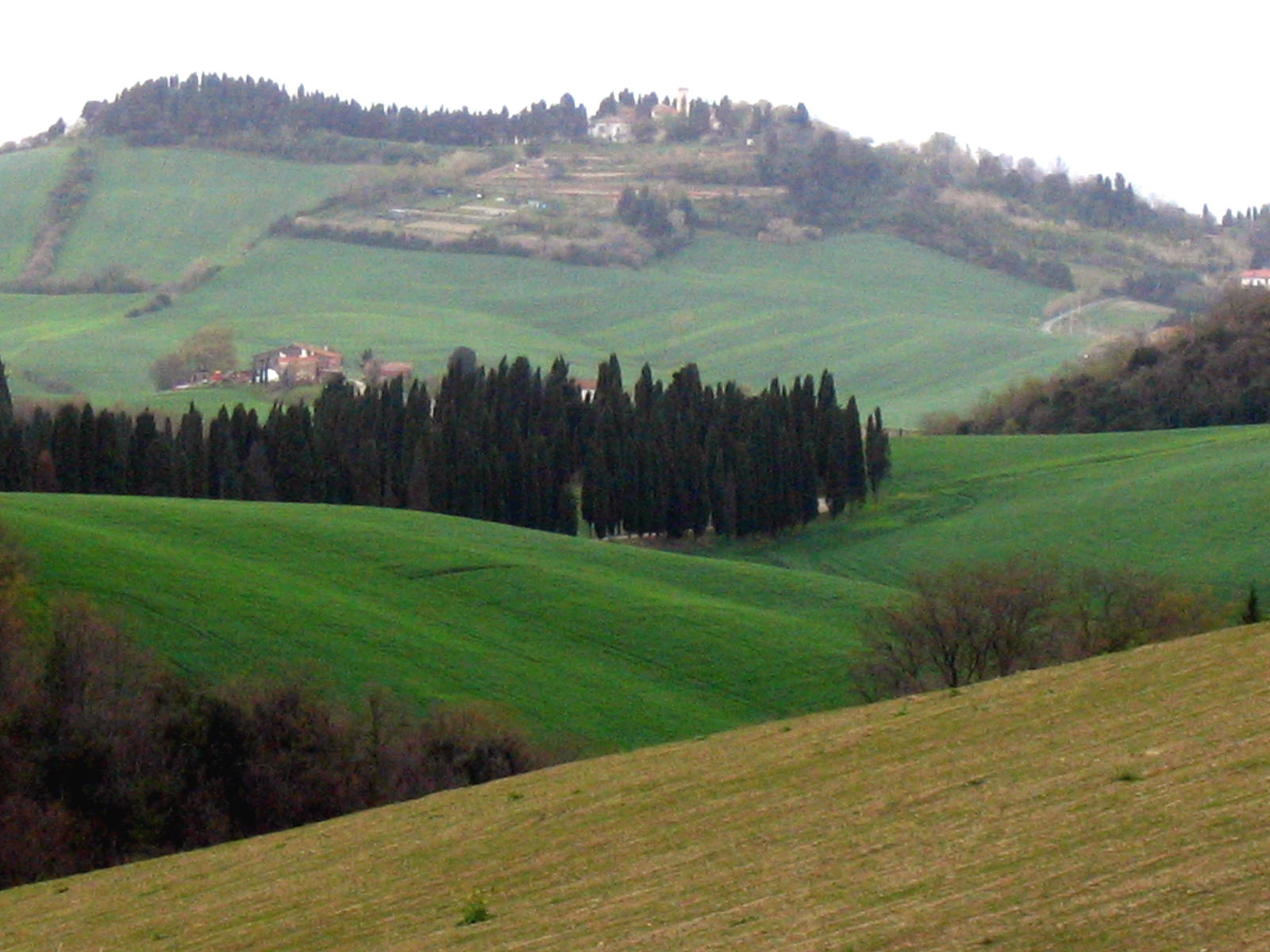Collesalvetti - Abbeys and legends within hidden forests and rivers - Tuscany, Beautiful Everywhere