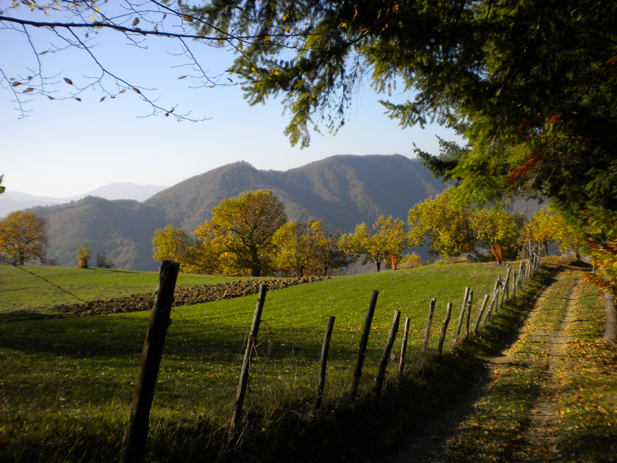 Palazzuolo sul Senio - Borderland in the heart of the Apennines