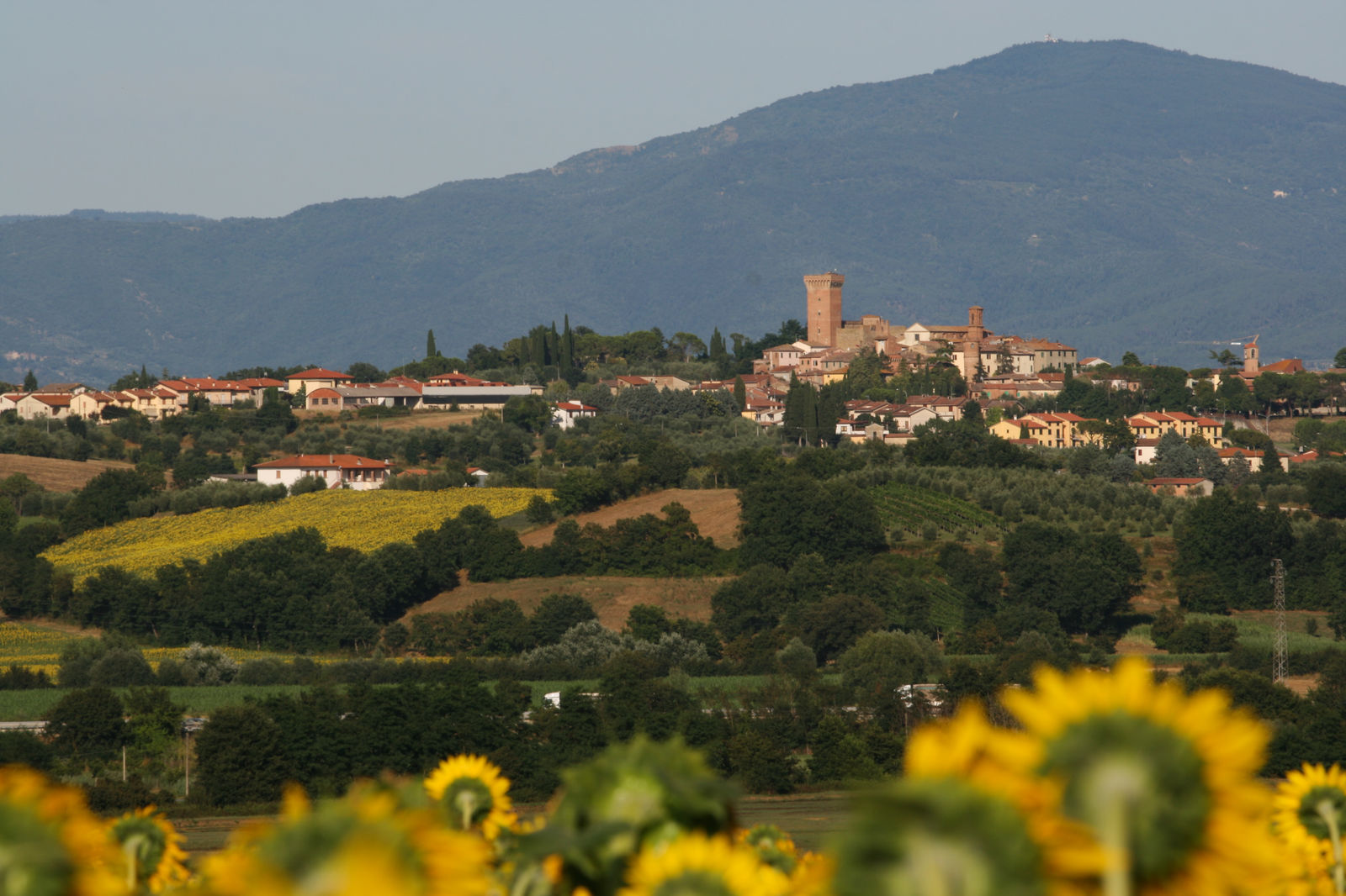 Marciano della Chiana - How history was made on 2 August 1554