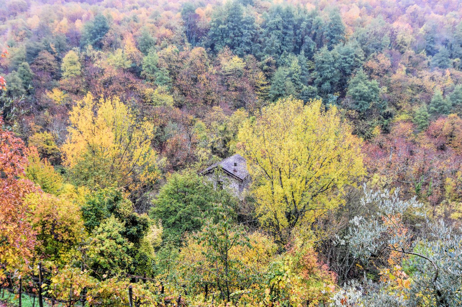 Zeri - Leggende tra le valli