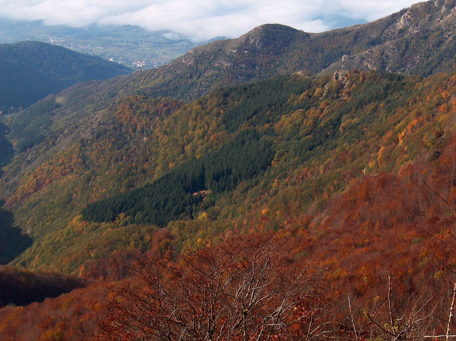 Reggello - Il paese che comincia sempre e non finisce mai - Toscana Ovunque Bella