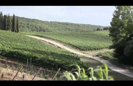 """Slow Mood"" VIDEO-DOCUMENTARIO Greve in Chianti"