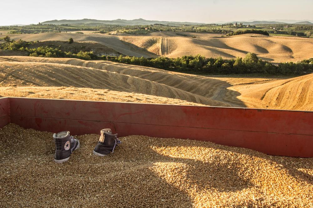 Asciano - Paese del garbo e del tartufo - Toscana Ovunque Bella