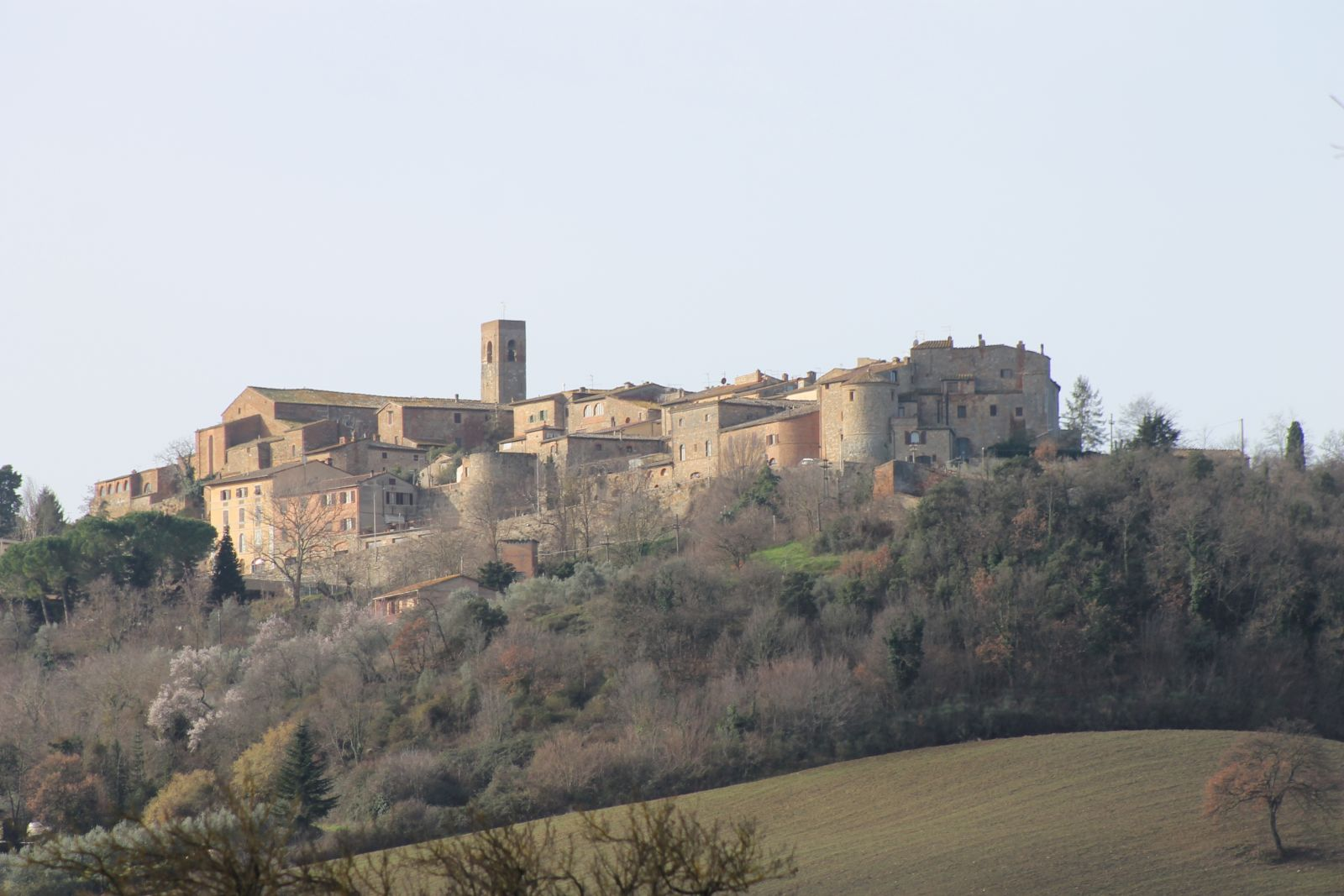 Casole d'Elsa - Casole d'Elsa: artisti d'altri tempi - Toscana Ovunque Bella