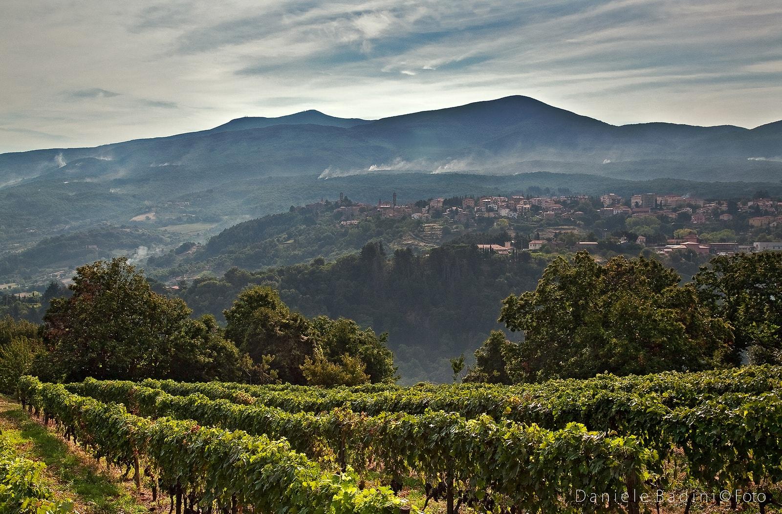 Castel del Piano - Un Paese, un Vulcano, Saperi e Sapori - Toscana Ovunque Bella