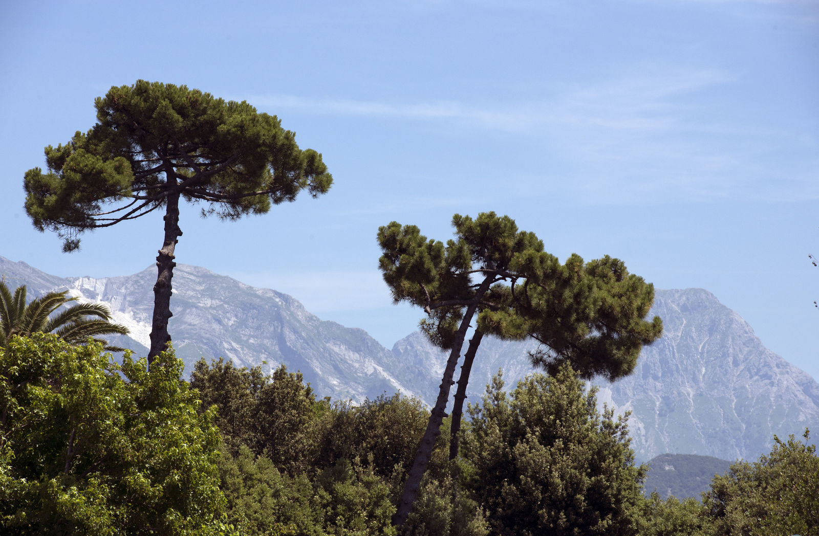 Toscana Ovunque Bella - Tutte le storie di Forte dei Marmi