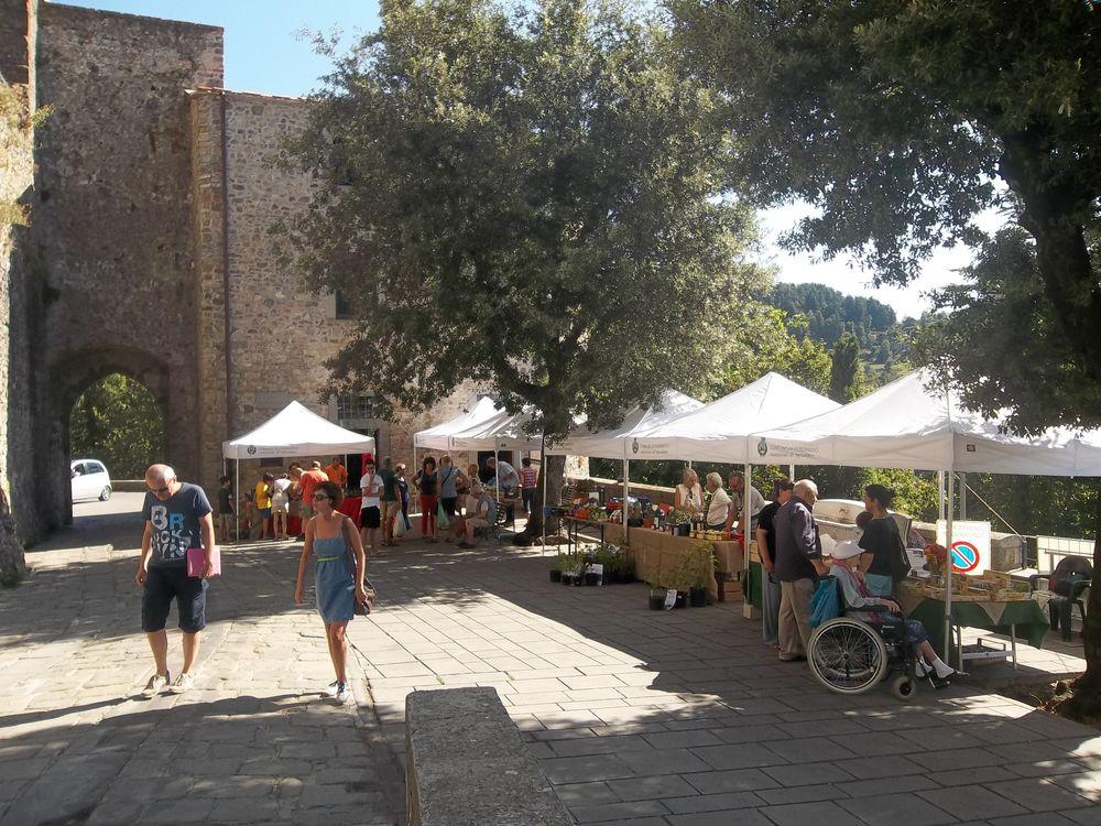 Fosdinovo - Quattro stagioni e una Rivoluzione - Toscana Ovunque Bella