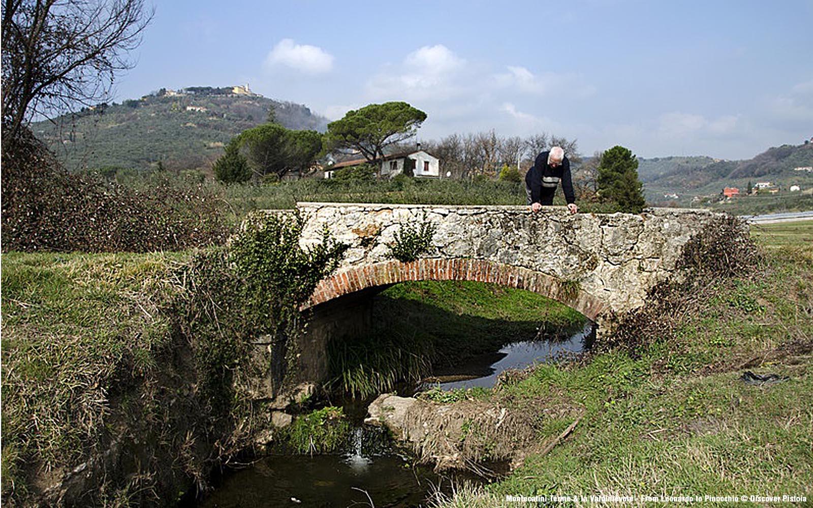 Pieve a Nievole - Terra di pipistrelli e di nobili abitanti - Toscana Ovunque Bella