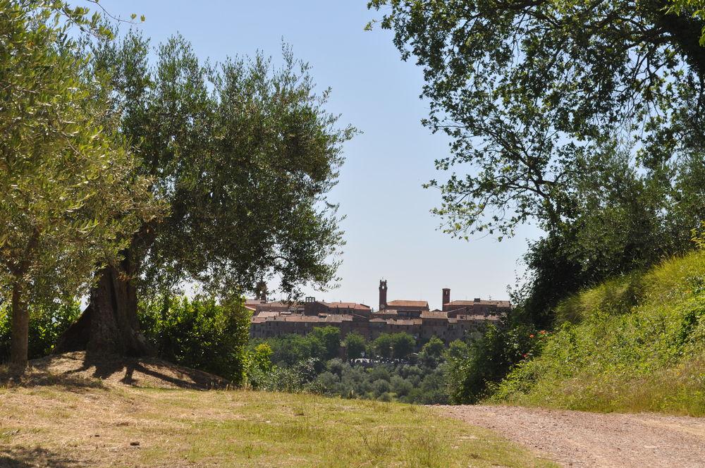 Torrita di Siena - Il sapore della storia e della leggenda