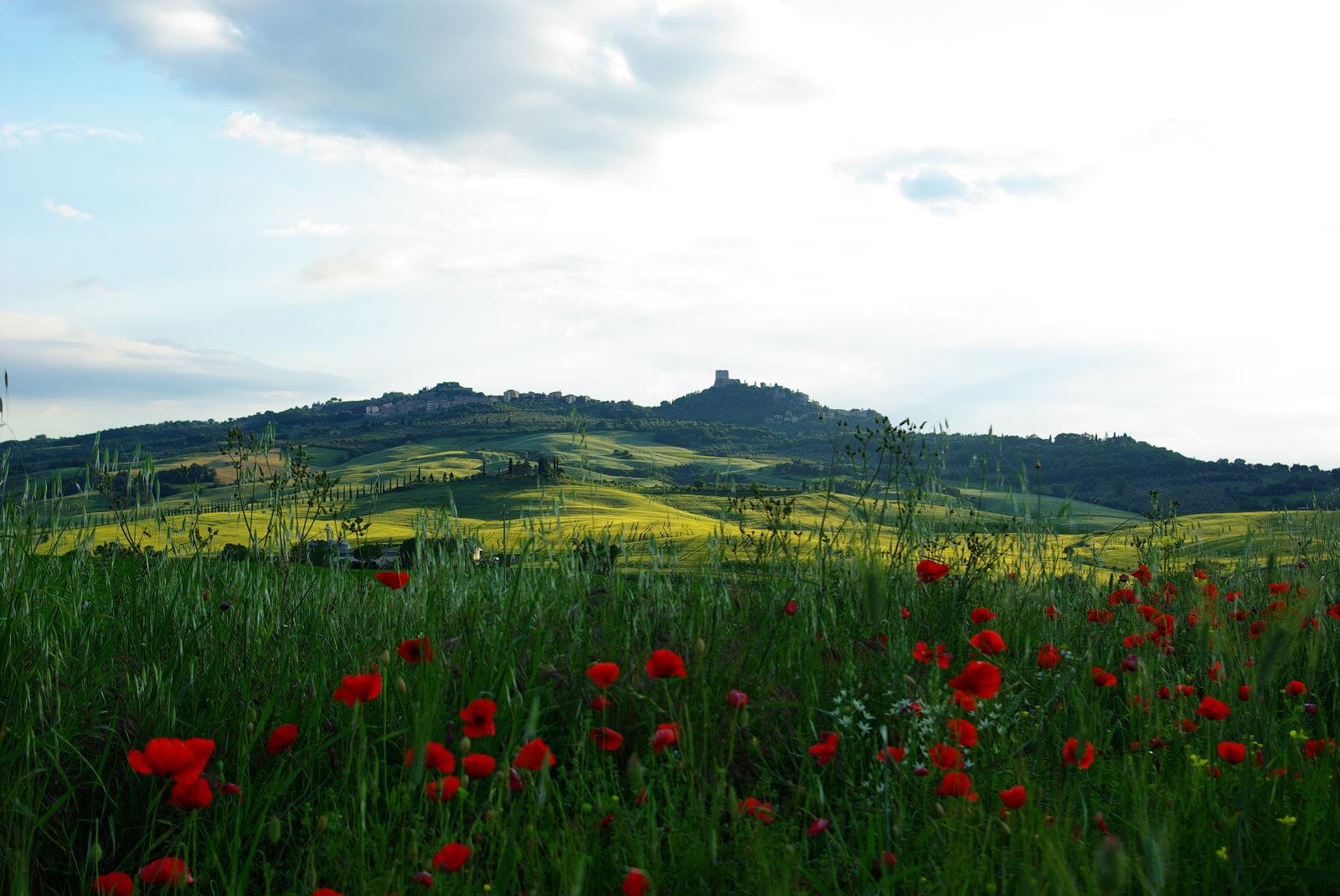 Castiglione d'Orcia - A spasso tra storia e mito - Toscana Ovunque Bella